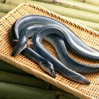 Japanese Eel Calories (574Cal/225g) and Nutrition Facts ...