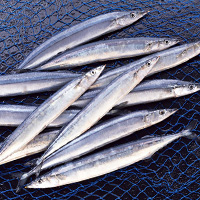 Pacific Saury Calories (214Cal/69g) and Nutrition Facts ...
