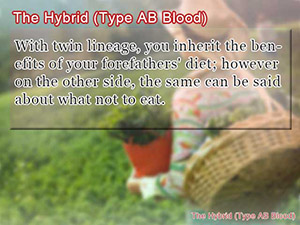 The Hybrid (Type AB Blood)