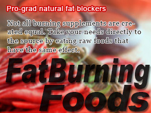 Pro-grad natural fat blockers