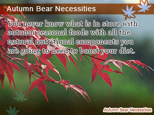 Autumn Bear Necessities