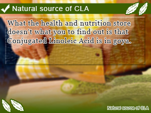 Natural source of CLA