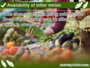 Availability of bitter melon