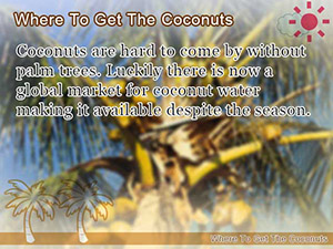 Where To Get The Coconuts