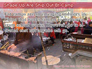Shape Up Are Ship Out Bt-Camp