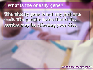 What is the obesity gene?