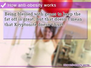 How anti-obesity works