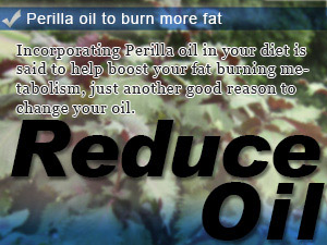 Perilla oil to burn more fat