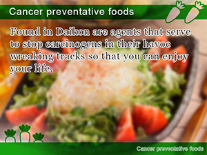 Cancer preventative foods