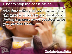 Fiber to stop the constipation