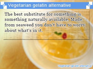 Vegetarian gelatin alternative