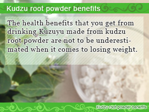 Kudzu root powder benefits