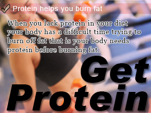 Protein helps you burn fat