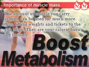 Importance of muscle mass