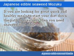 Japanese edible seaweed Mozuku