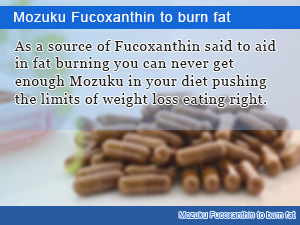 Mozuku Fucoxanthin to burn fat