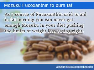 Mozuku Fucoxanthin to burn fat