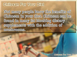 Chitosan For Your Diet