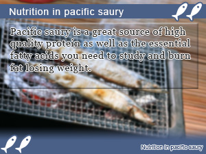 Nutrition in pacific saury