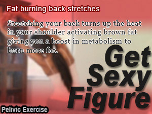 Fat burning back stretches