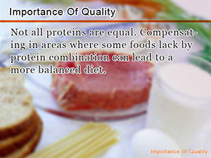 Importance Of Quality