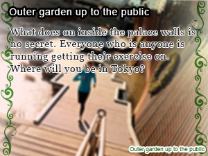 Outer garden up to the public