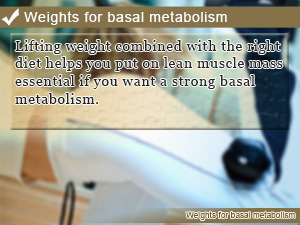 Weights for basal metabolism
