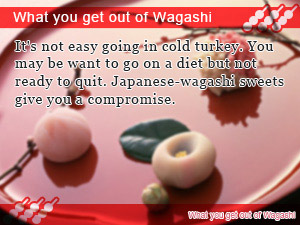 What you get out of Wagashi