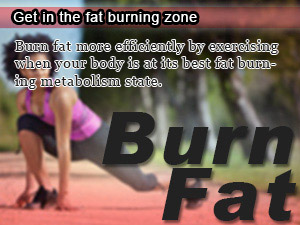 Get in the fat burning zone