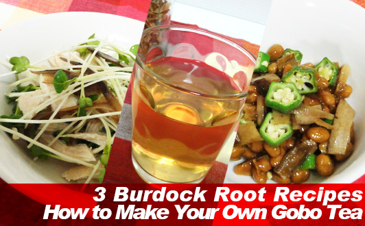 Burdock Root and Burdock Root dishes