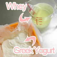 whey and Greek Yogurt