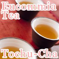 Eucommia Tea Tochu-Cha
