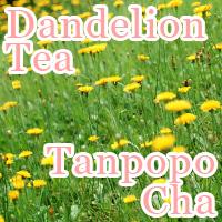 Dandelion Tea Tanpopo-Cha