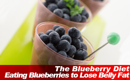 The Blueberry Diet: Eating Blueberries to Lose Belly Fat