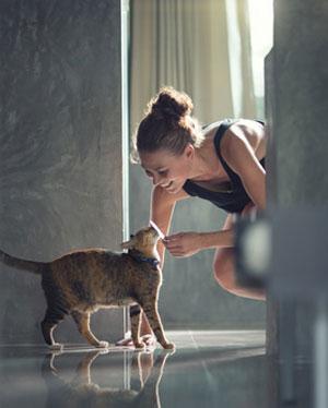 cat greeting owner at door
