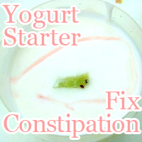 fix constipation yogurt starter