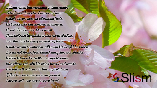 Cherry flowers with a poem over it