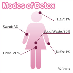 modes of detox