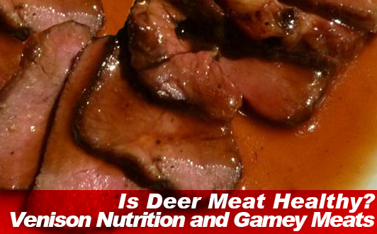 Is Deer Meat Healthy? Venison Nutrition and Gamey Meats