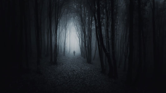 spooky forest with man walking