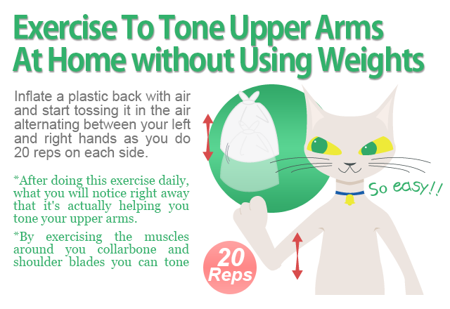 Exercise To Tone Upper Arms  At Home without Using Weights