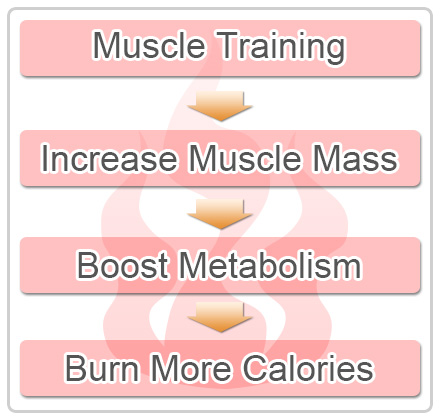 Incrase muscle mass to Boost Metabolism