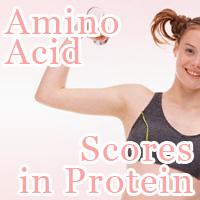 Amino Acid Scores in Protein