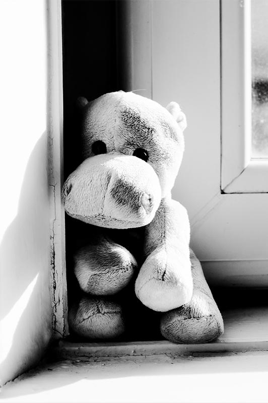 Stuffed toy standing near a window.