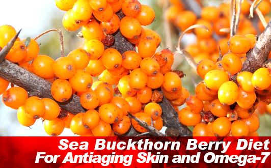 Sea Buckthorn Berry Diet For Antiaging Skin and Omega-7