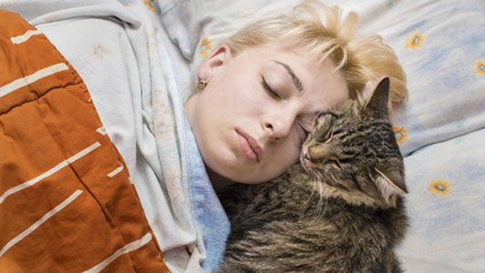 girl napping with cat