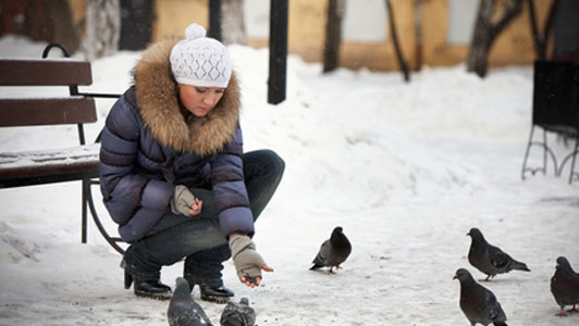 woman feeding pidgins