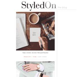 screenshot of styledon