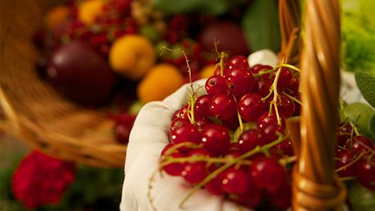handfull of berries