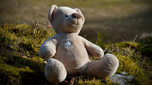 Teddy bear left in the grass